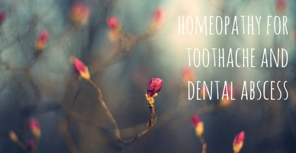 Homeopathy for Toothache and Dental Abscess