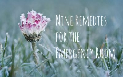 Nine Remedies for the Emergency Room