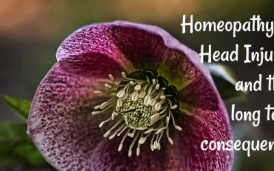 Homeopathy for Head Injuries and their long term consequences