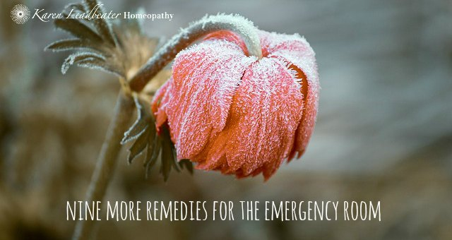 Nine More Remedies for the Emergency Room